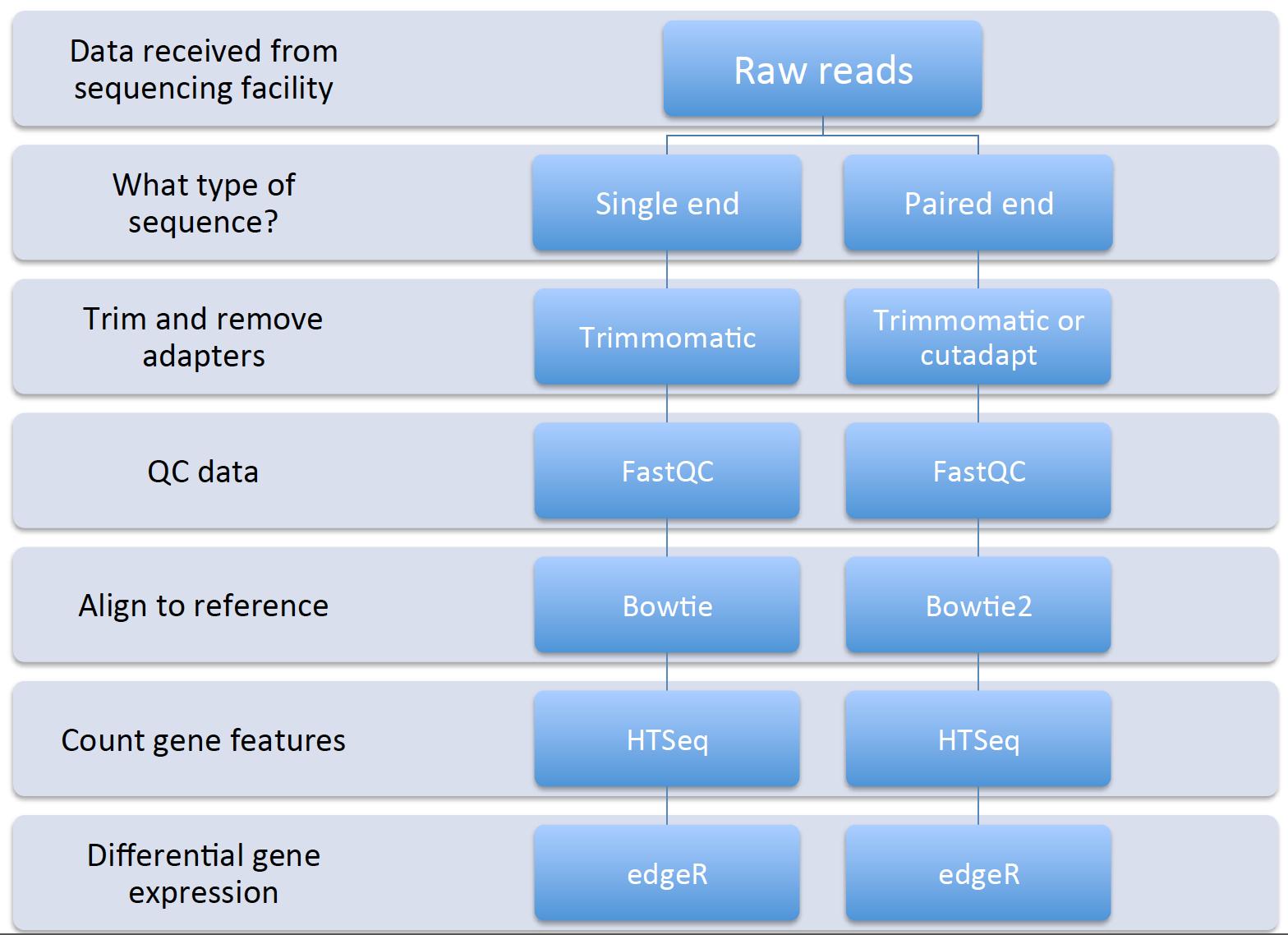 RNA-seq background information, data analysis procedure, and